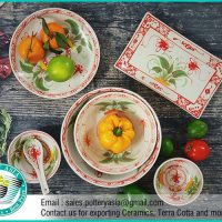 Dinnerware Set Red Dragonfly On Leaf Pattern